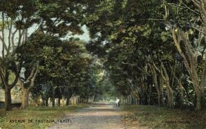 french polynesia, TAHITI, Avenue de Fautaua (1910s)