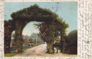 Scenic view,  Jarvis Lane, Far Rockaway,  New York, PU-1907