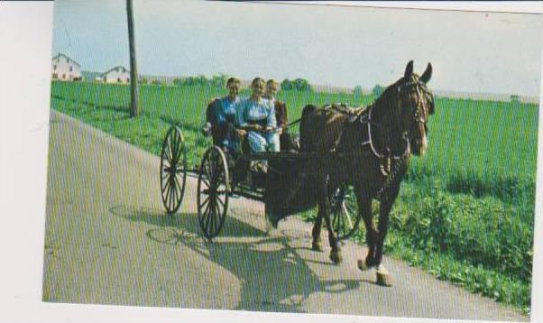 Three Young Amish Women in Prayer Caps Driving Horse Drawn Buggy, Pennslyvani...