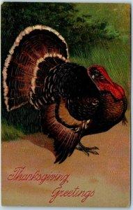 1910s PFB Embossed Postcard THANKSGIVING GREETINGS Turkey - UNUSED