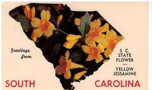 Postcard - The Palmetto State, South Carolina - State Flower - Yellow Jessamine