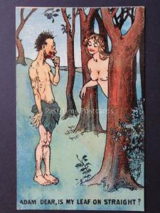 Old Comic Postcard ADAM & EVE ADAM DEAR, IS MY LEAF ON STRAIGHT? No.704
