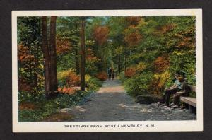 NH Greetings from SOUTH NEWBURY NEW HAMPSHIRE Postcard