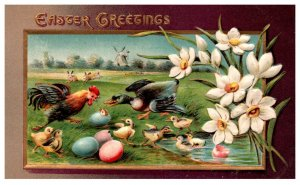 Easter   Chickens  and Ducks