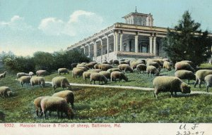 1907 BALTIMORE MARYLAND*MD*MANSION HOUSE & FLOCK OF SHEEP*VANPELT*LYNCHBURG VA