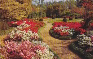 Georgia Atlanta Gardens At Cerebral Palsy Center Of Atlanta