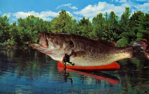 Exaggeration - The big one got away     (fish)