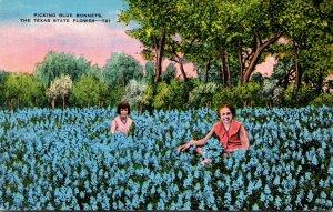 Texas State Flower Picking Blue Bonnets