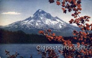 Mt Hood, OR Post Card  ;      :      Mt Hood, Oregon Mt Hood OR Unused