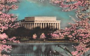 The Lincoln Memorial,  Washington, D.C., Early Hand Colored Postcard, Unused