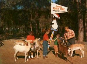 Tommy Bartlett's Deer Ranch Silver Springs FL Unused