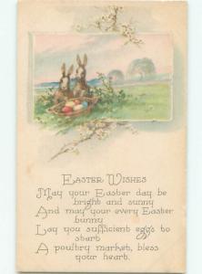 Divided-Back EASTER BUNNY RABBIT SCENE Cute Postcard AA1183