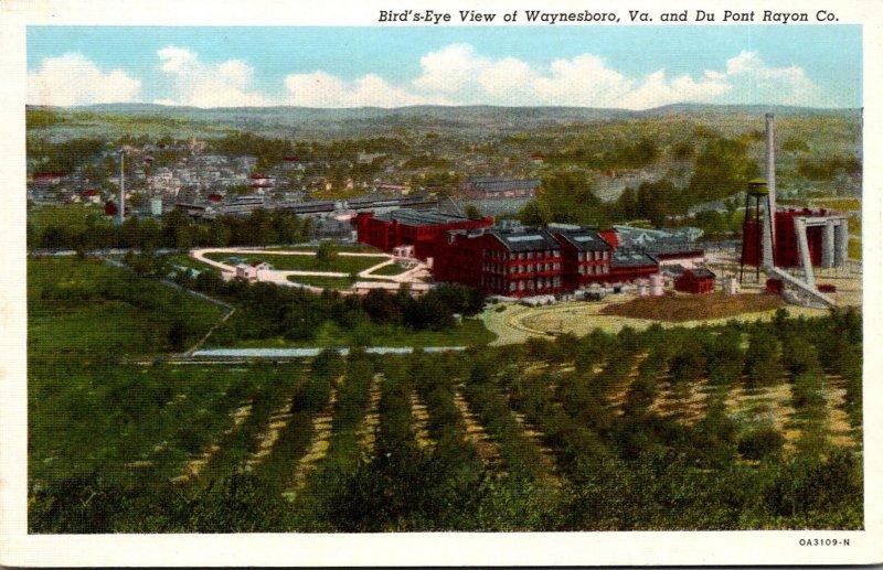 Virginia Waynesboro & Du Pont Rayon Company Birds Eye View Curteich