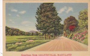 Maryland Greetings From Grantsville Landscape Scene