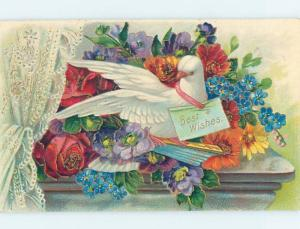 Divided-Back WHITE DOVE BIRD WITH BIRTHDAY NOTE ho4205