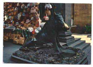 Italy Firenze Boar of Tacca Statue Florence Postcard 4X6