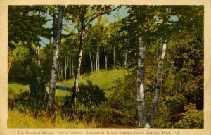 Canada - Prince Edward Island, The Haunted Woods, Green Gables, Cavendish