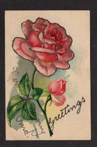 IN Greetings From NEW HARMONY INDIANA Postcard Roses PC
