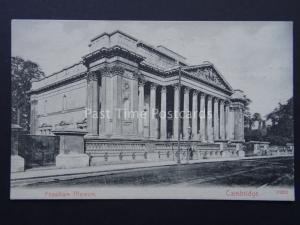 Cambridge FITZWILLIAM MUSEUM c1905 Postcard by Stengel & Co. 19202