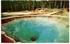 INTERMOUNTAIN TOURIST C8180, Morning Glory Pool, Yellowstone National Park