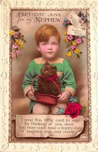 Birthday Joys Nephew Cat in The Basket Rotary Photo Postcard