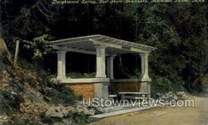 Dwightwood Springs Mackinac Island MI Unused