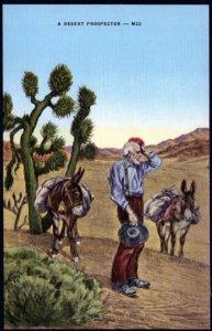 A Desert Prospector with His Donkeys Cactus - LINEN