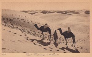 EGYPT - The Passage in the Desert , EGYPT , 00-10s