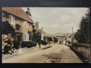 Dorset CHIDEOCK MAIN STREET near Bridport - Old Postcard by W Frost Series 72805