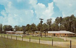 Swimming Pool, Town and Country Motel, US 301, FAYETTEVILLE, North Carolina, ...
