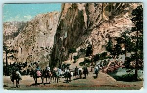 YOSEMITE NATIONAL PARK, CA ~ On HORSEBACK Trail to GLACIER POINT c1910s Postcard