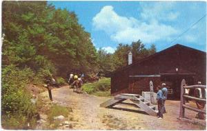 Blackwater Falls State Park Davis West Virginia WV, Horsebac