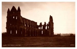 17457  Whitby Abbey  RPC Judges LTD no.3976