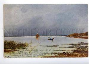 170423 NORWAY Fishing Boat HUNT Duck by LANDSREN vintage PC