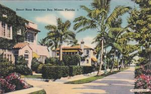 Florida Miami Residential Street Scene Near Biscayne Bay 1943