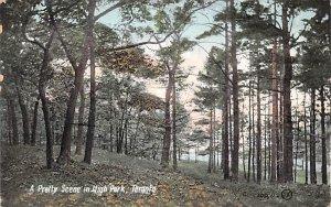 Pretty Scene in High Park Toronto 1907