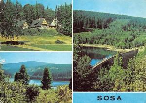 Sosa (Kr. Aue) An der Talsperre des Friedens Lake Forest Landscape