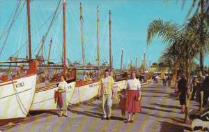 Florida Tarpon Springs Sponge Fleet At Dock