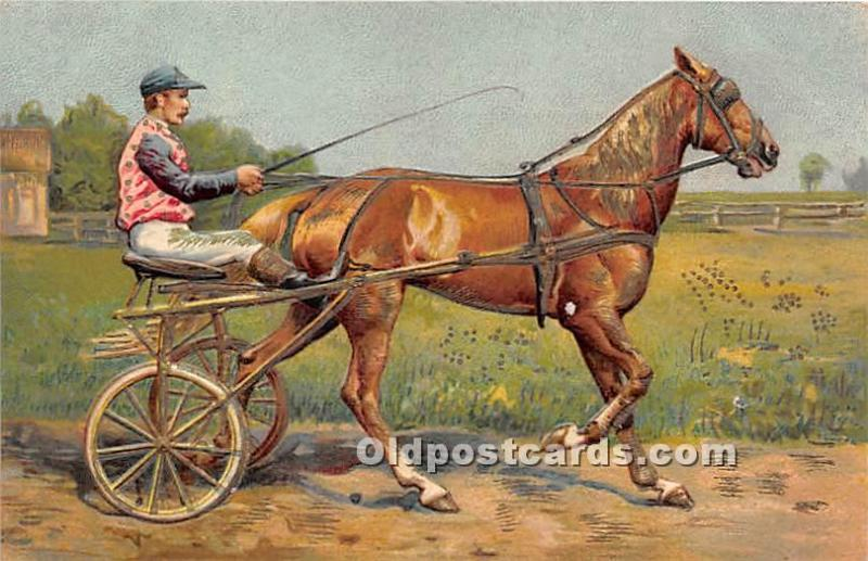 Horse Racing Postcard Horse and Cart