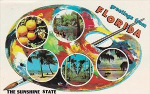 Florida Greetings With Multi Views