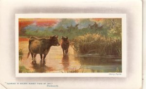 Harry Payne. Cows in river Tuck Oilette In the Country Ser. PC # 9757
