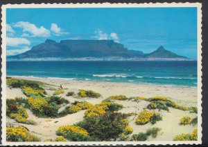 South Africa Postcard - Cape Town, Table Mountain From Blouberg Strand   DC1750