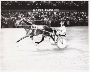 HAZEL PARK HARNESS RACEWAY, Mannart Stand Out Lowered His Season's Record