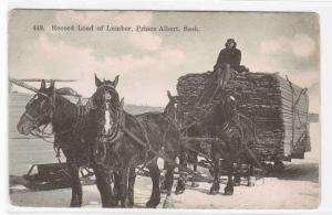 Horse Lumber Logging Team Prince Albert Saskatchewan Canada 1910c postcard