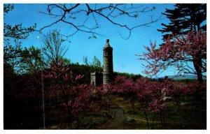 Pennsylvania  Gettysburg  Summit of Little Round Top