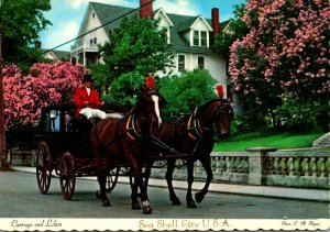 Michigan Mackinac City Lilac Time Horse and Carriage