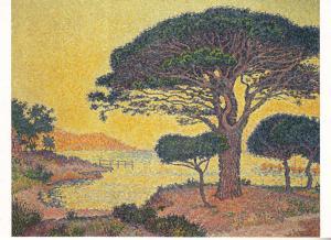 St. Tropez, les pins parasols aux Canoubiers by Paul Signac