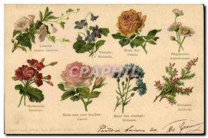 Old Postcard Fantasy Flowers language