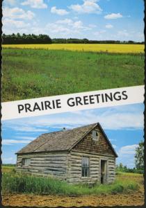 Prairie Greetings Canola Rapeseed Crop House SK Sask Saskatchewan Postcard D9