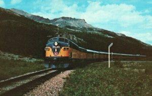 The Alaska Railroad, AK, Mile Post 348, Unused Chrome Vintage Postcard g9324